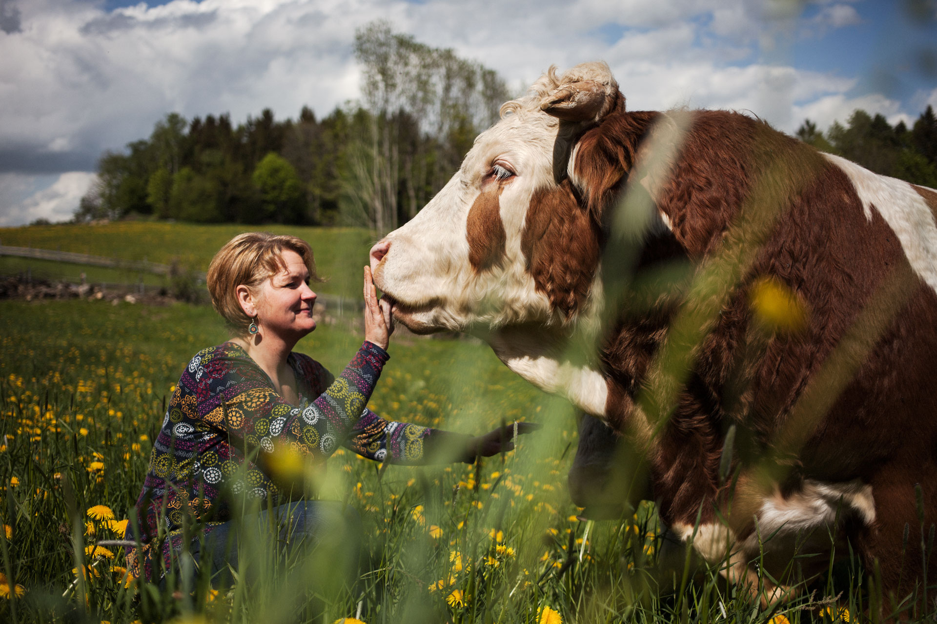 timo-stammberger-photography-fotografie-animal-rights-cow-rind-tierrechte-natur-erdlingshof-mitgefuehl-compassion