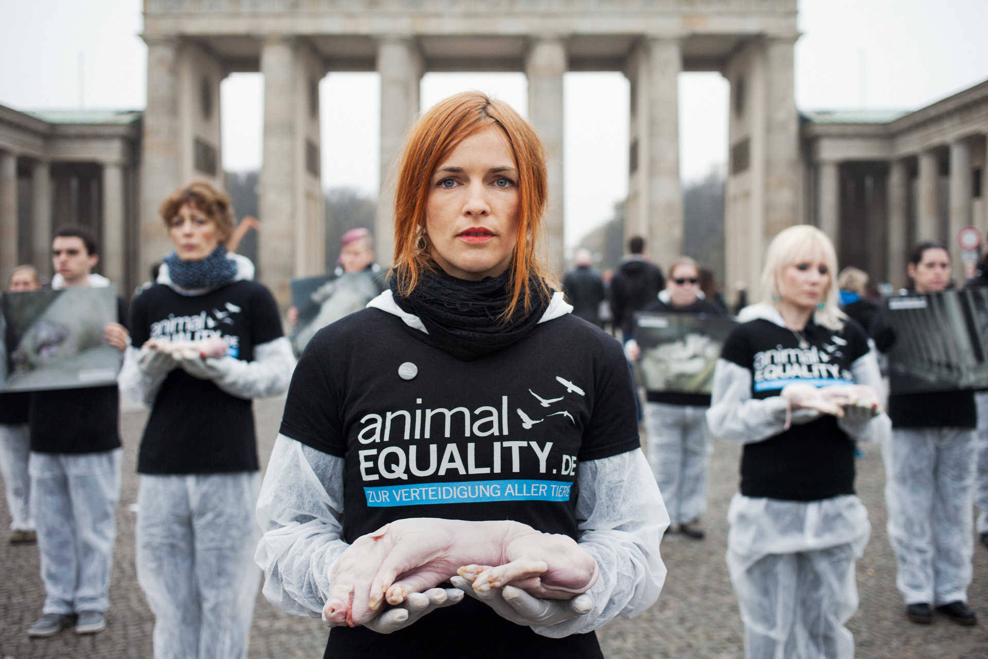 timo-stammberger-photography-fotografie-animal-rights-tierrechte-activism-aktivismus-mitgefuehl-vegan-compassion