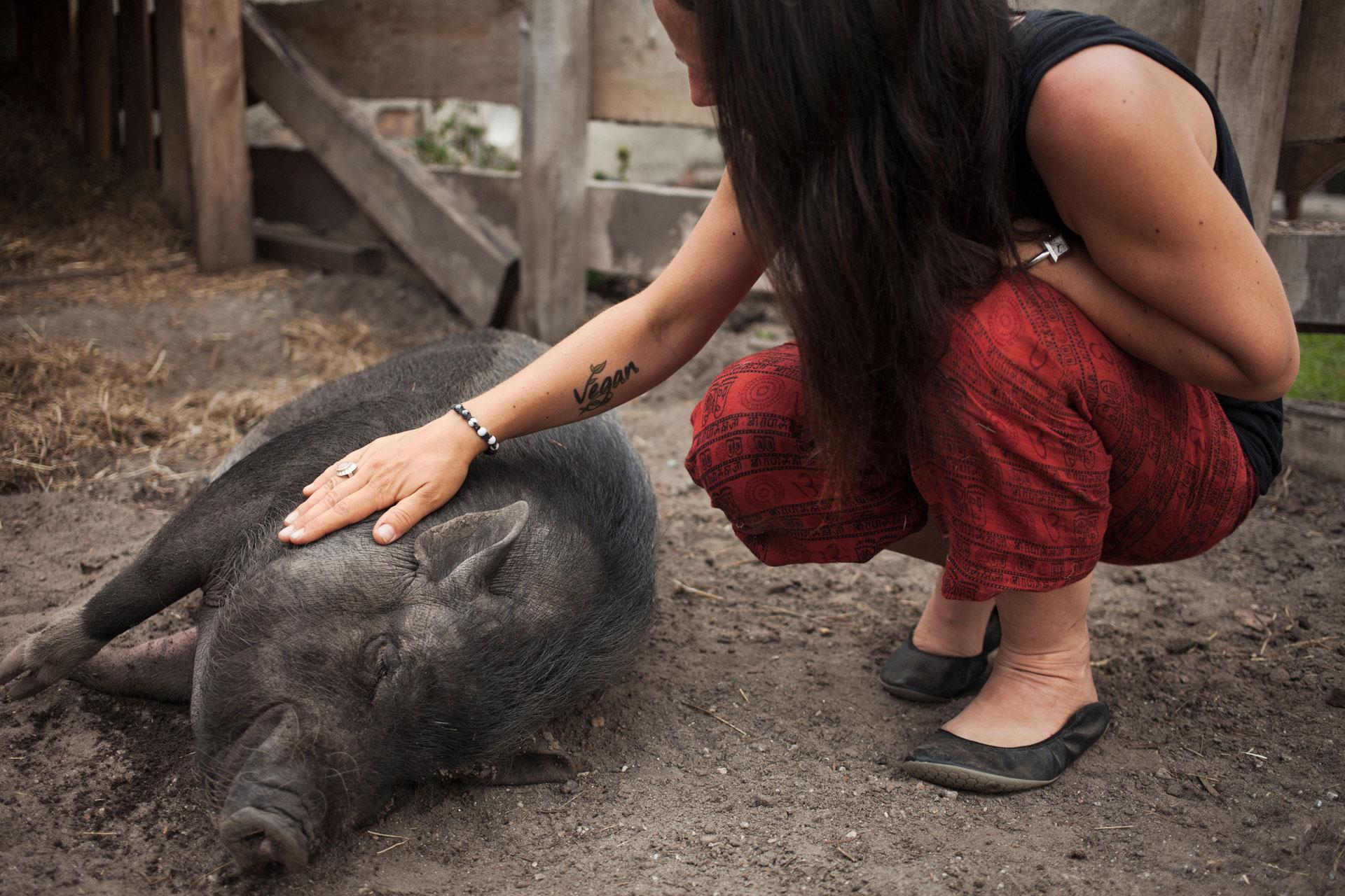 timo-stammberger-photography-fotografie-animal-rights-tierrechte-wildschwein-boar-streichen-pet-vegan-tattoo-compassion