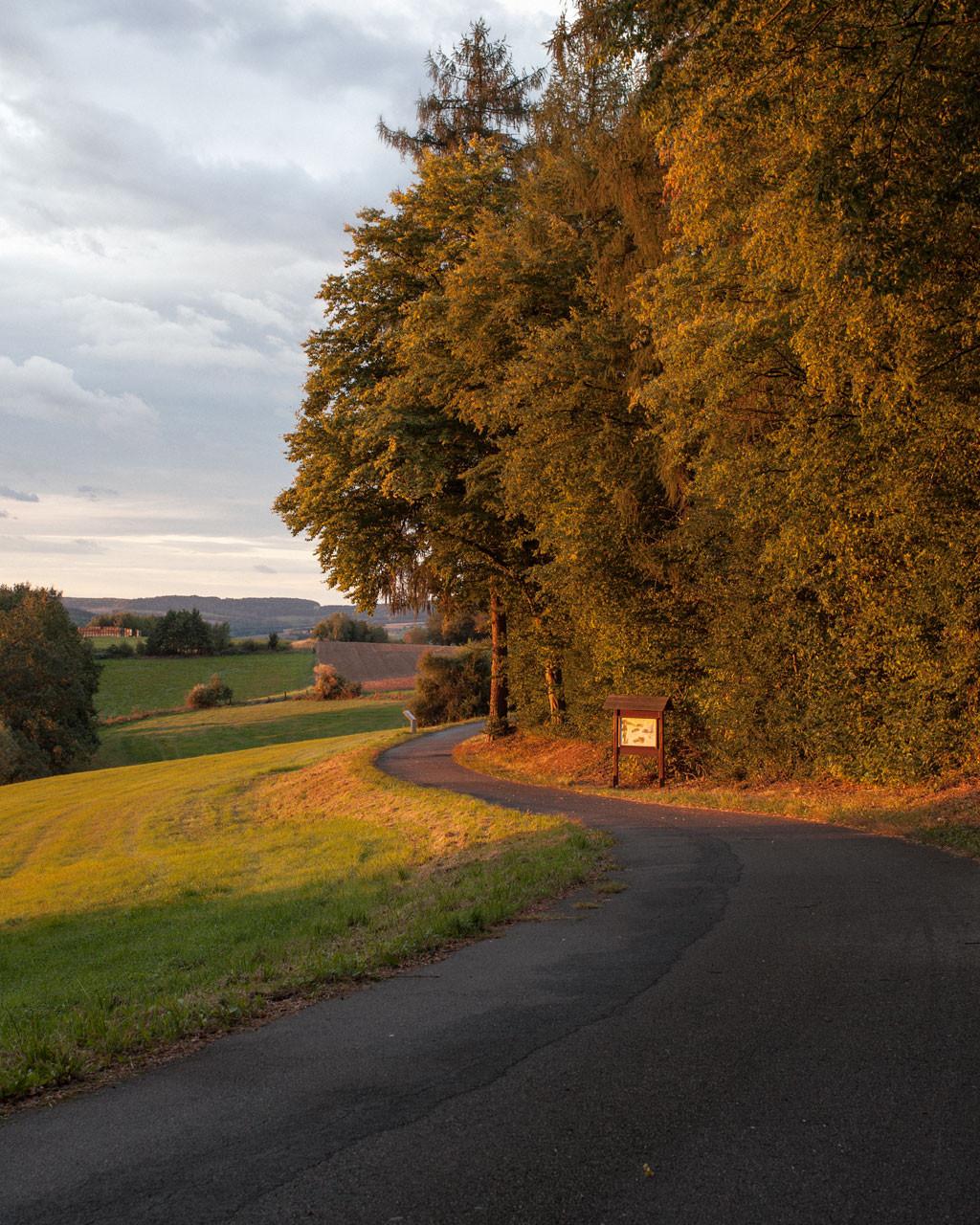Timo_Stammberger_Duderstadt_Landscape_Forerest_Wald_Herbst_Fall_02