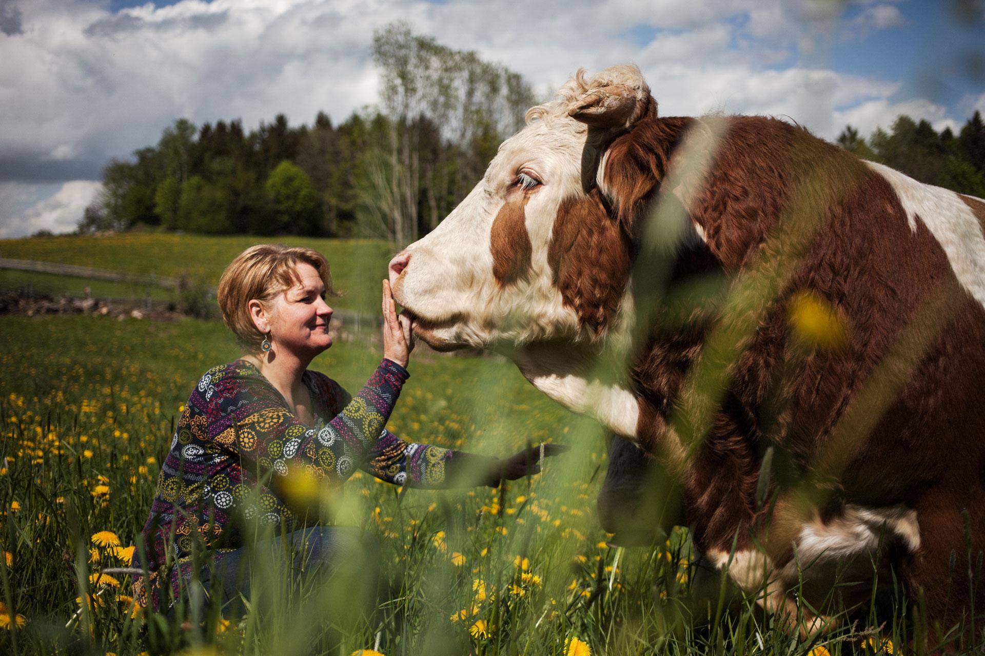 timo-stammberger-photography-fotografie-animal-rights-cow-rind-tierrechte-natur-erdlingshof-mitgefuehl-compassion