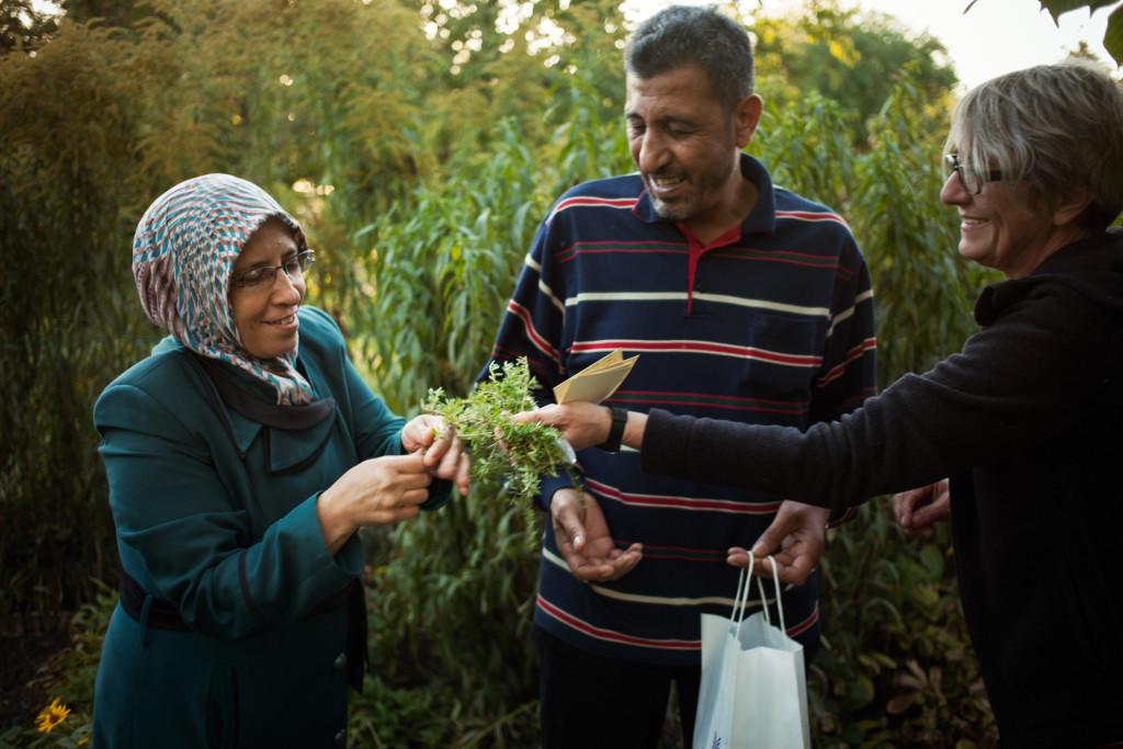 timo-stammberger-photography-fotografie-berlin-lageso-refugees-fluechtlinge-migration-herbs-integration