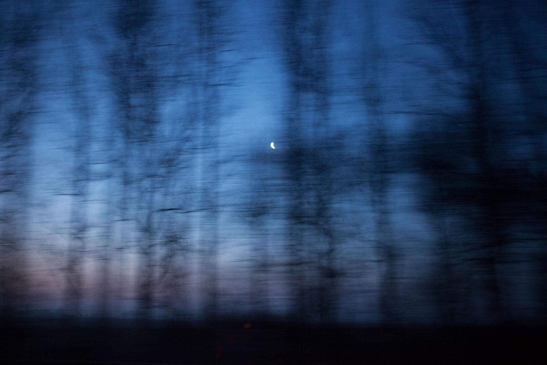 timo-stammberger-photography-fotografie-blue-hour-blurred-treeline-moon-mond-blaue-stunde