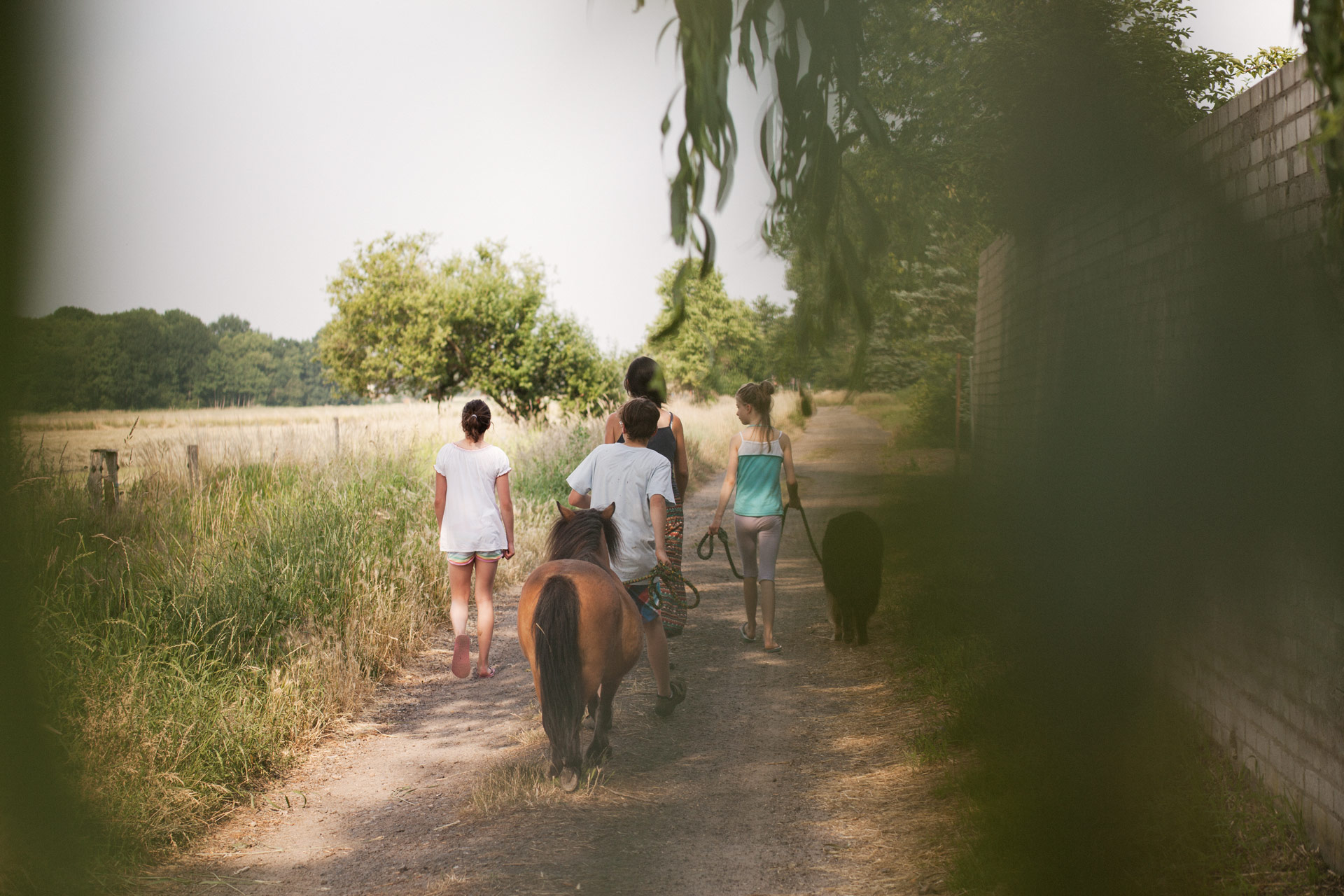 timo-stammberger-photography-fotografie-harmony-nature-animals-summer-mitgefuehl-vegan-compassion